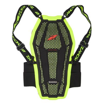esatech backprotector